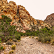Red Rock Canyon Trail Landscape