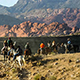 Horseriding in the Nevada outback
